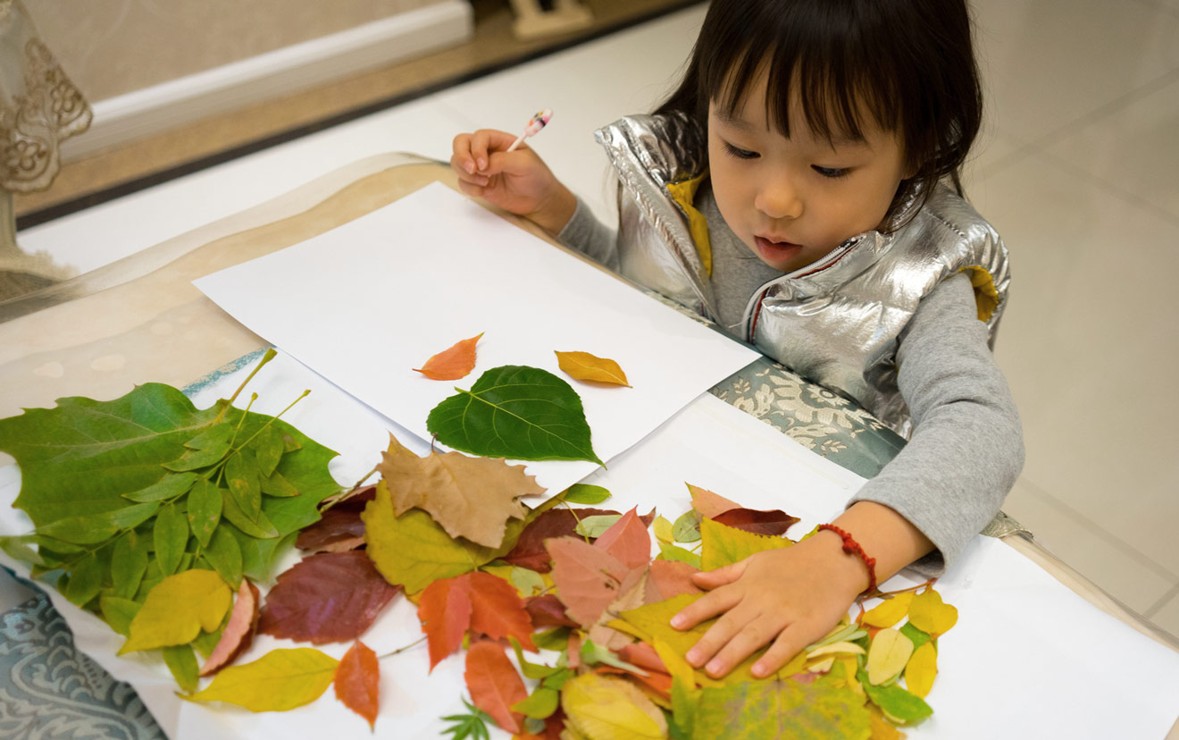 Young Girl Arranging Leaves for Thanksgiving Placemats