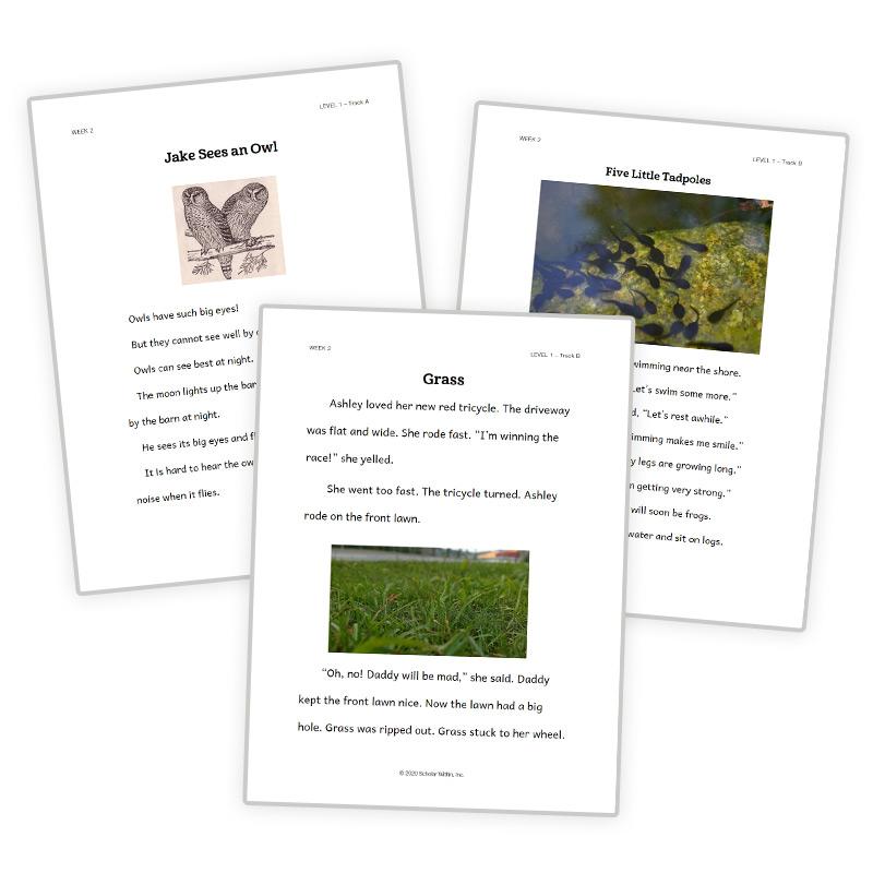 1st Grade Reading Program Passages