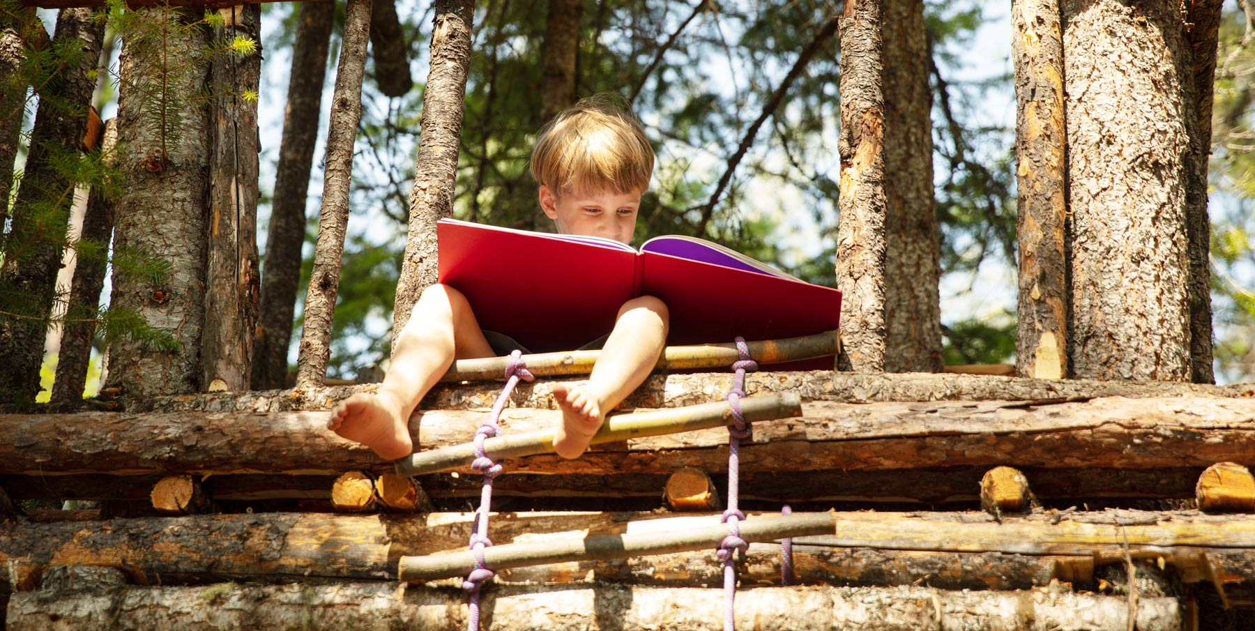 6 Benefits of Summer Reading Programs