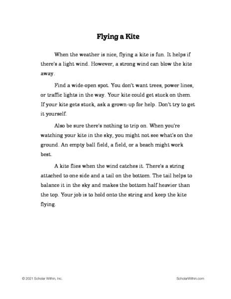 Grade 3: Flying a Kite (Student)